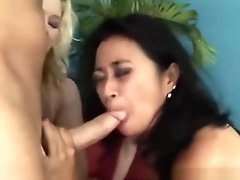 Three Naughty Cougars In Wild